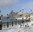 Сезонное жилье в Старом Крыму